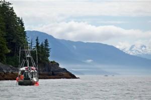 可持续海鲜如何选?尽在美国阿拉斯加海产