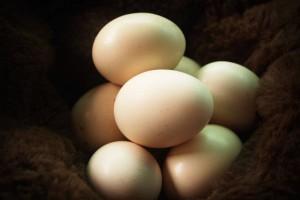 总胆固醇偏低好吗哪些因素能引起总胆固醇低